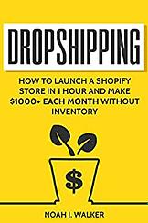 E-Commerce Lawdropshipping